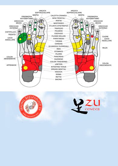 Olisticmap - Master intensivo Reflessologia Zu