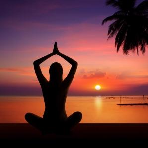 OlisticMap - Yoga Raja
