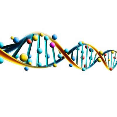 OlisticMap - Cronogenetica