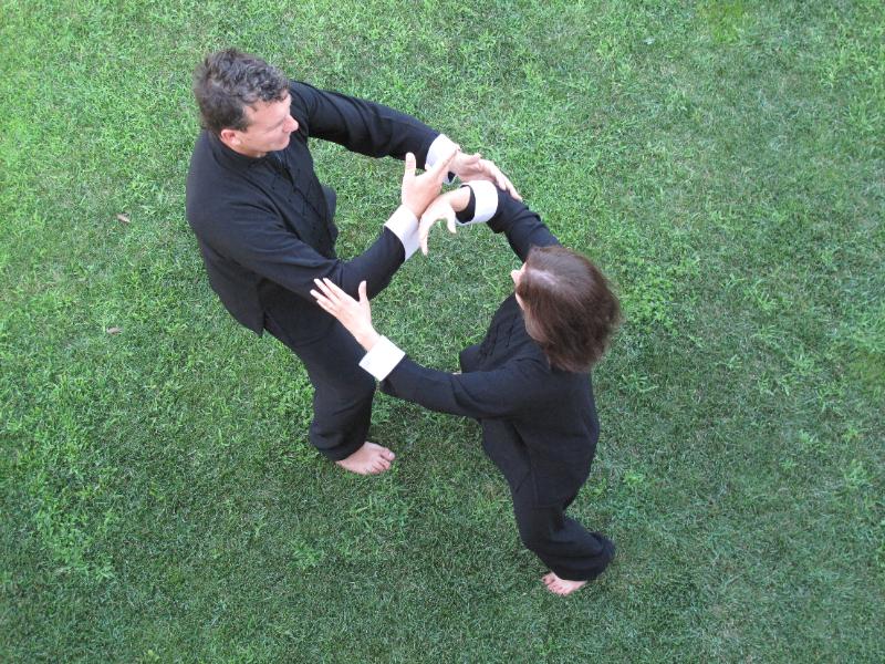 OlisticMap - tai chi e chi kung . Alla ricerca del mondo armonico