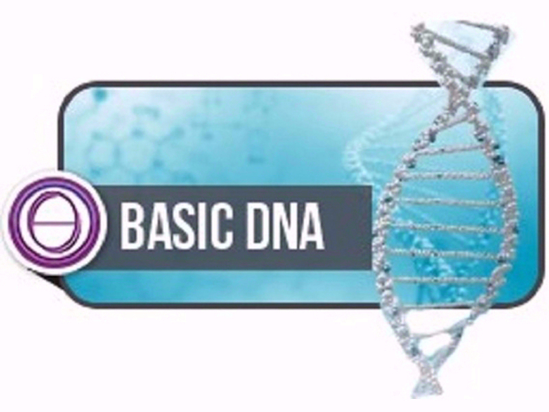 OlisticMap - Seminario Thetahealing DNA2 Base
