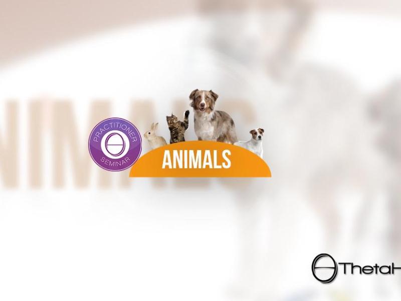Olisticmap - Seminario Animali ThetaHealing® a Firenze Novoli