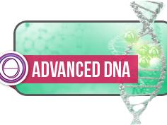 Olisticmap - Seminario DNA avanzato a Montecatini Terme (PT)