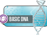 Olisticmap - ThetaHealing DNA Base