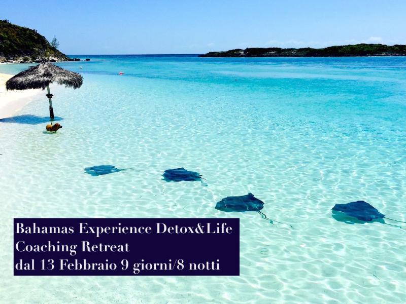 Olisticmap - Bahamas Experience