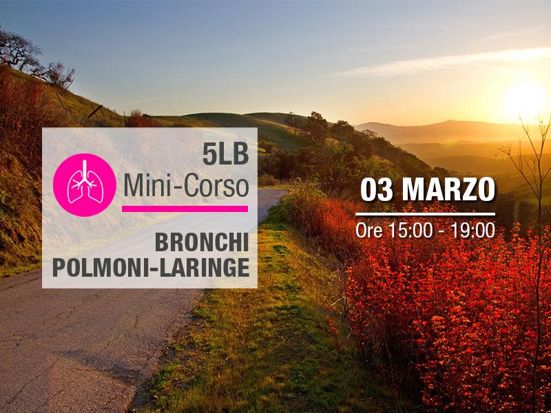 Olisticmap - Mini-corso 5LB: Bronchi, Polmoni, Laringe