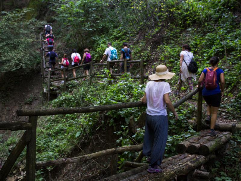 OlisticMap - Yoga trek