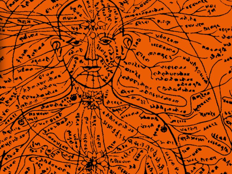 OlisticMap - Il corpo dello yoga, corpo psicosomatico, energetico e alchemico