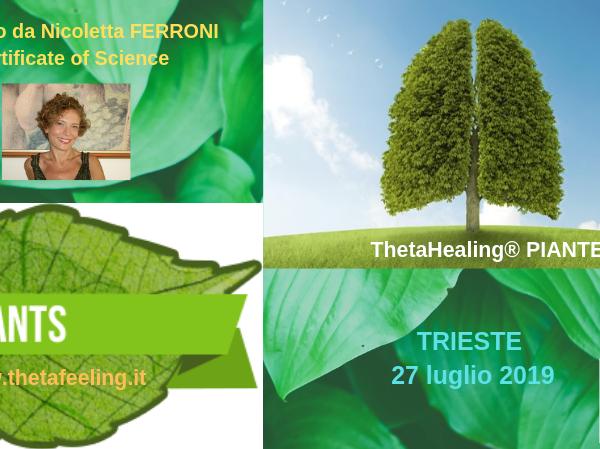 Olisticmap - ThetaHealing® Piante