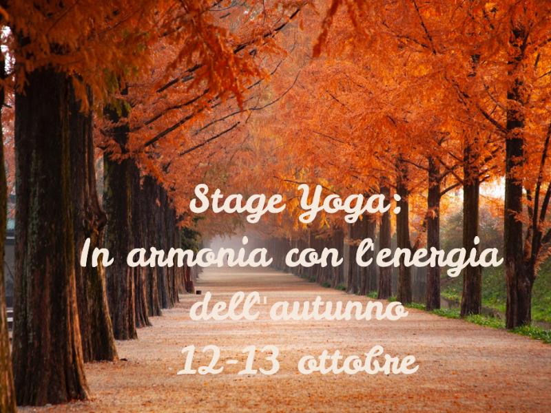 Olisticmap - Stage Yoga: in armonia con l'energia dell'autunno