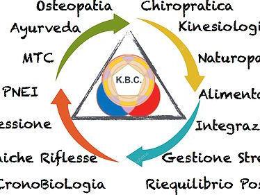 Olisticmap - Kinesiologia Biologica Consecutiva