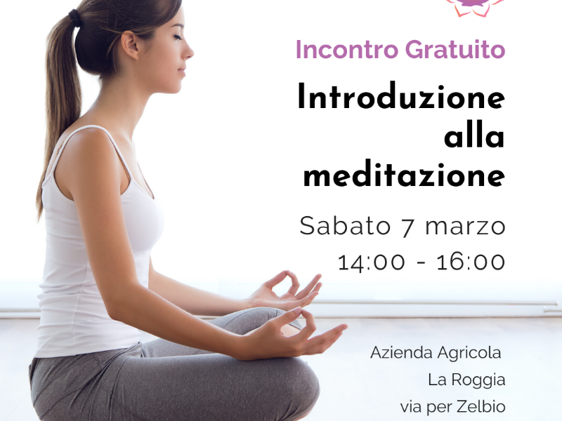 Olisticmap - Incontro gratuito: Introduzione alla meditazione