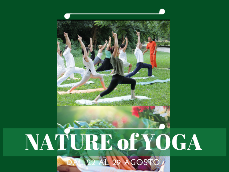 Olisticmap - THE NATURE OF YOGA