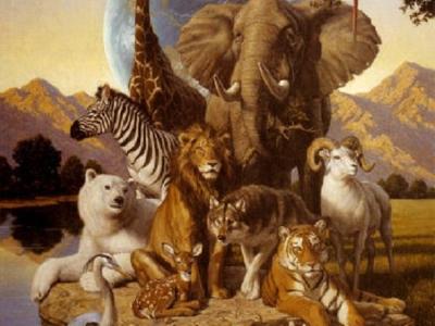 Olisticmap - Interazione tra Uomo e Animale nella dimensione sciamanica