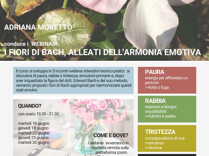 Olisticmap - I fiori di Bach, alleati dell'armonia emotiva: webinar