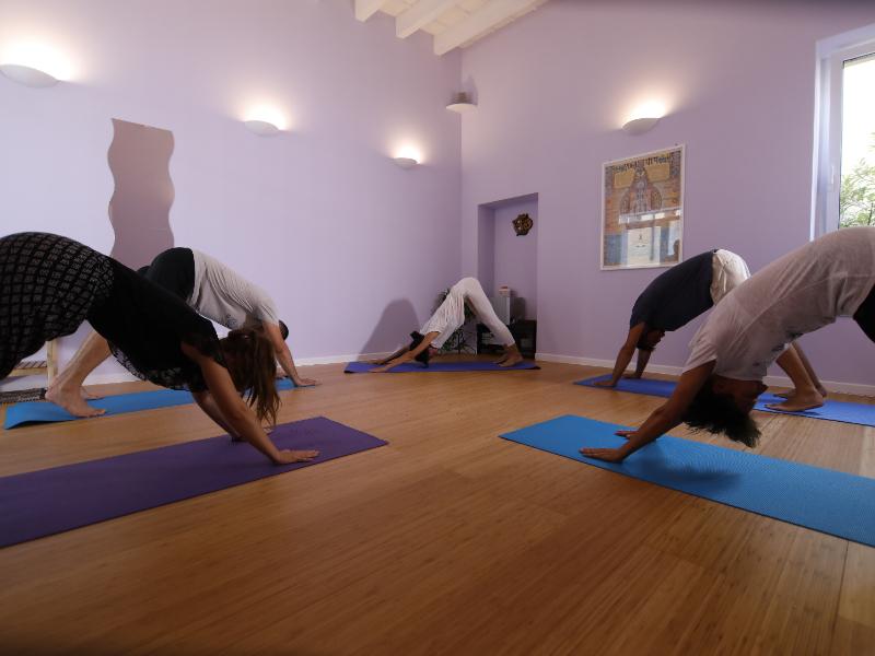 Olisticmap - Hata Yoga, Yon Yoga e Yoga Flow
