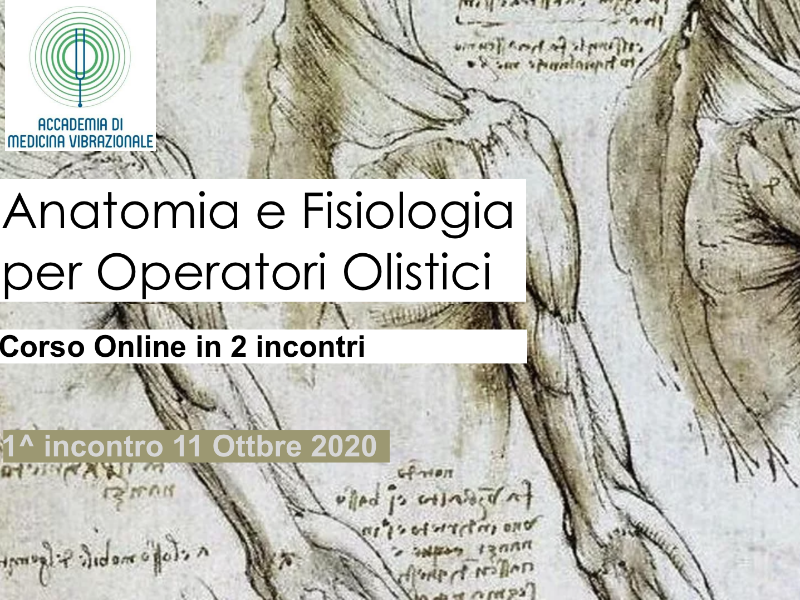 Olisticmap - Anatomia e Fisiologia per Operatori Olistici