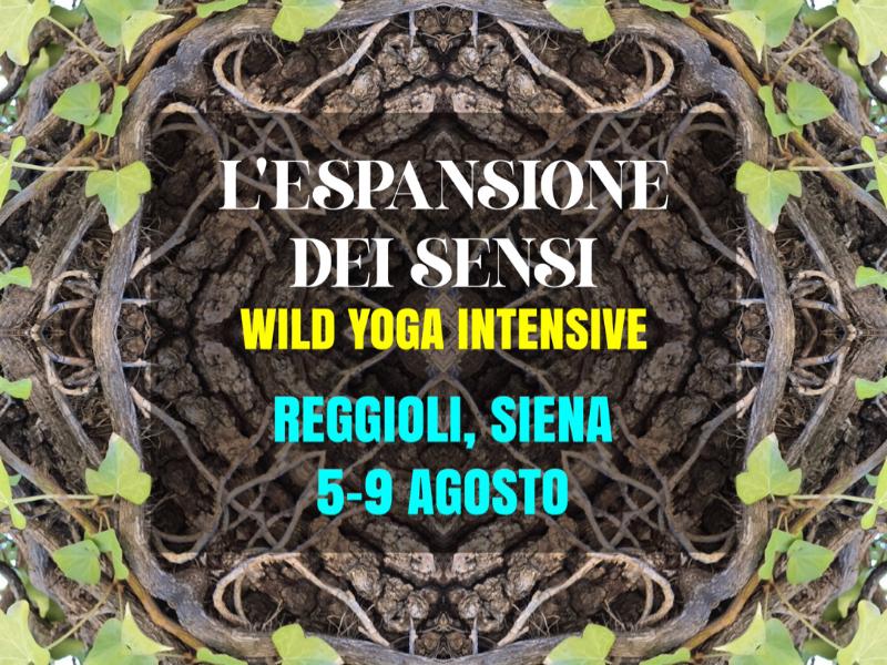 Olisticmap - Wild Yoga Intensive - L'Espansione dei Sensi