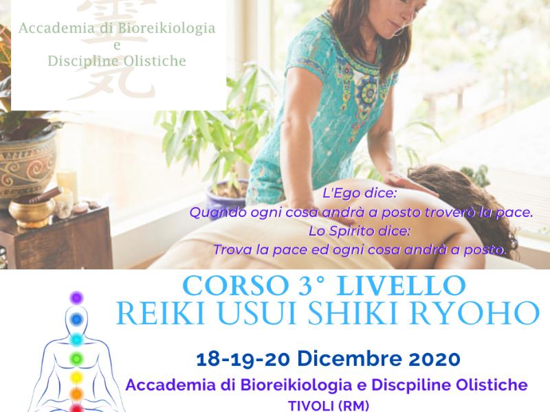 Olisticmap - TERZO LIVELLO REIKI USUI SHIKI RYOHO