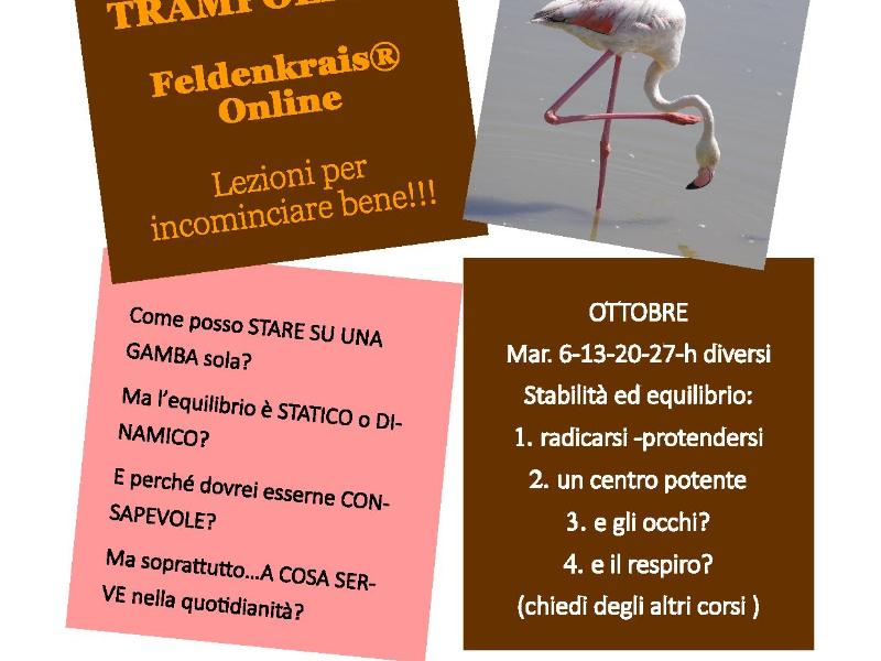 Olisticmap - Metodo Feldenkrais® e le Lezioni a tema: stabilità ed equilibrio