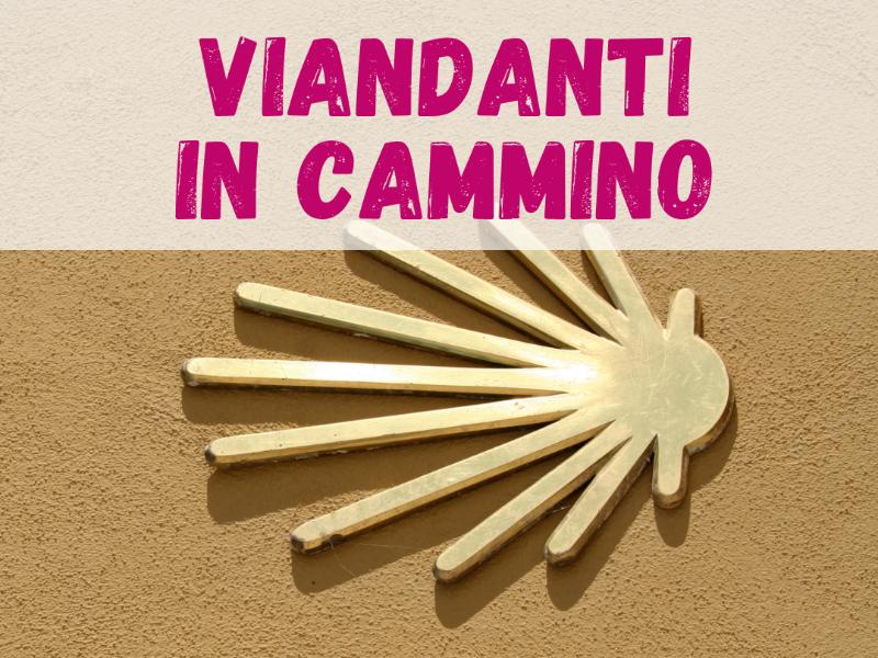Olisticmap - VIANDANTI IN CAMMINO • SANTIAGO DE COMPOSTELA