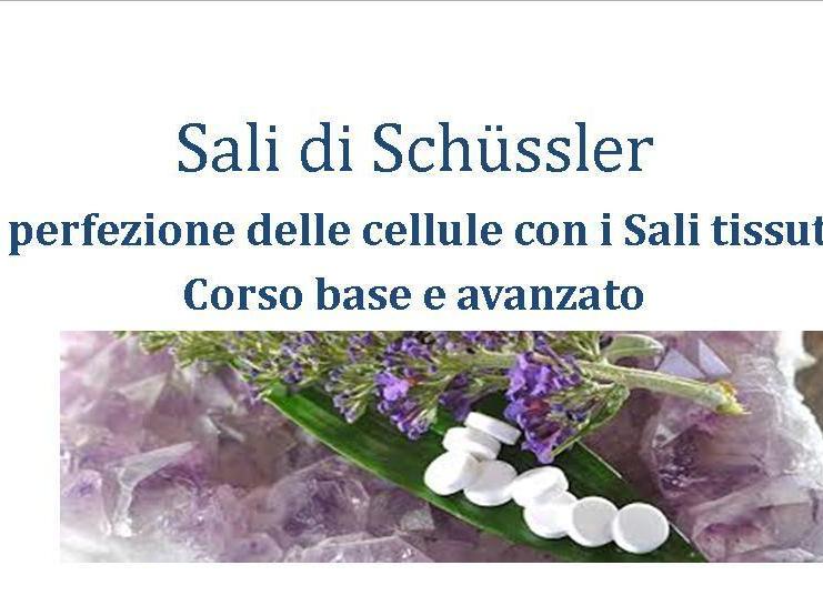 Olisticmap - Sali minerali tissutali di Schussler