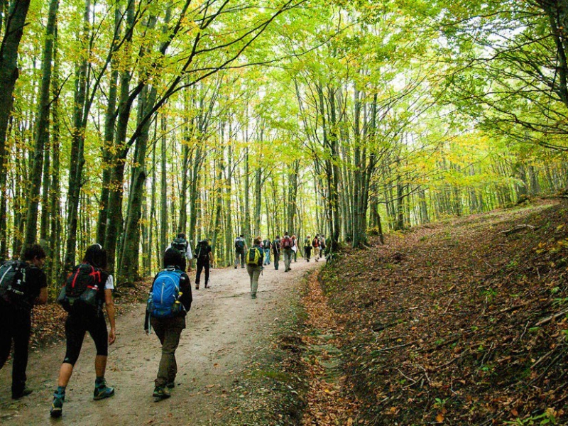 Olisticmap - Ritiro Yoga e trekking in natura