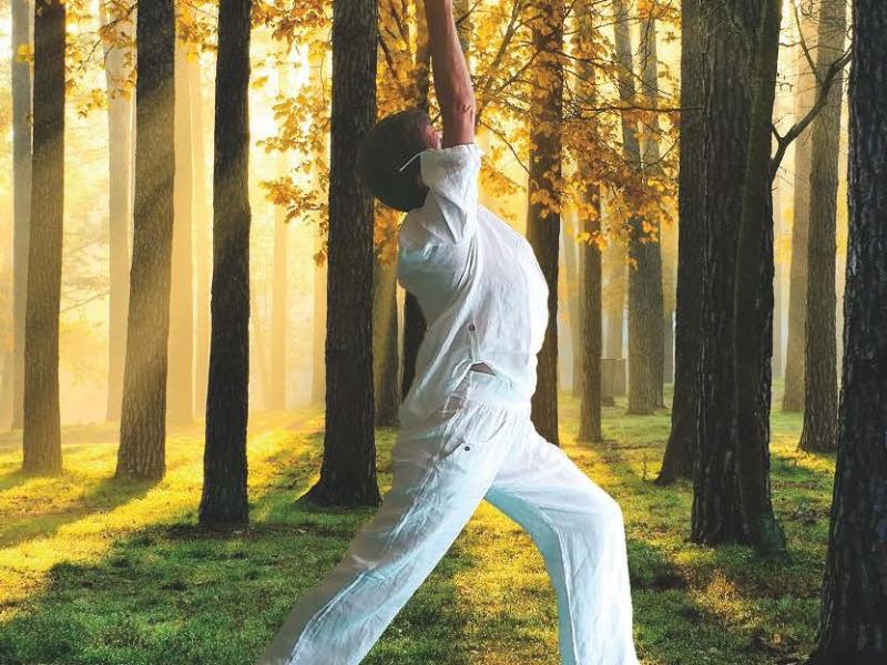 Olisticmap - Yoga per tutti