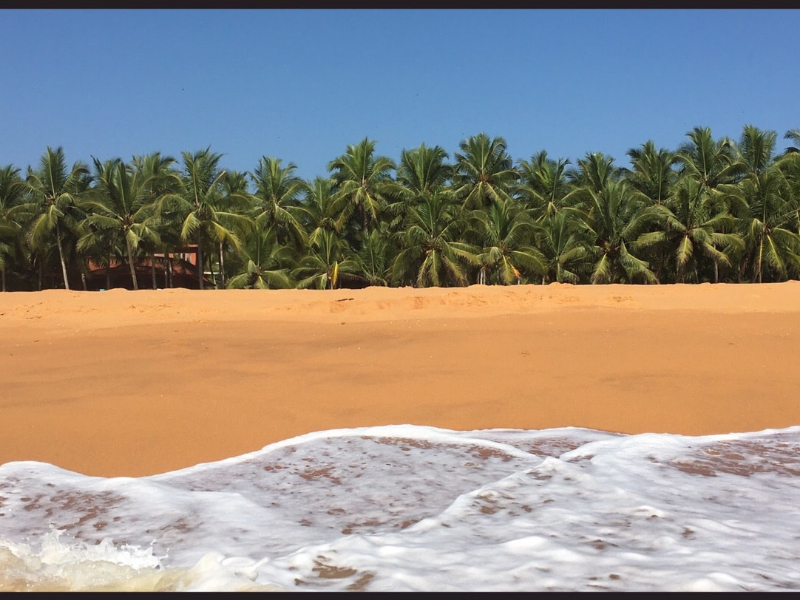 OlisticMap - La millenaria medicina ayurvedica al Linta's Ayurvedic Golden Beach