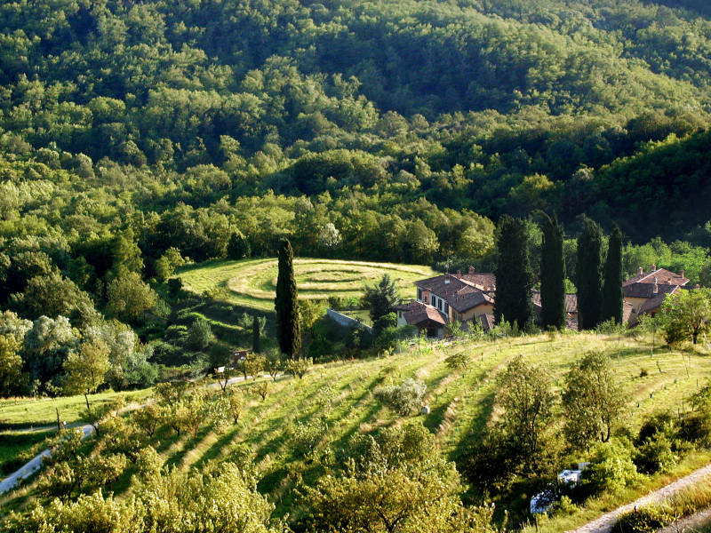 OlisticMap - Oasi di Galbusera Bianca – Agriturismo Bio di Charme