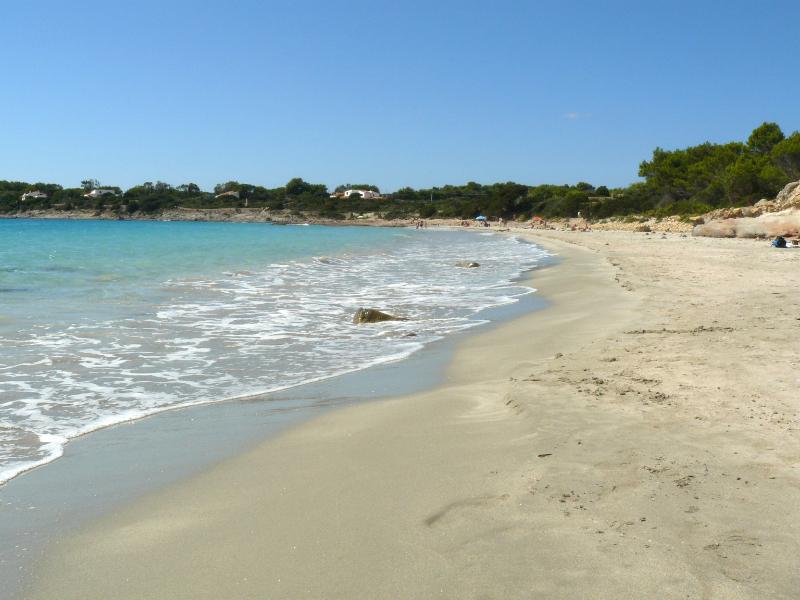 OlisticMap -  Yoga e Meditazione in Sardegna