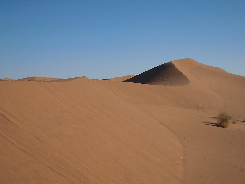 OlisticMap - Gli Eremiti del deserto