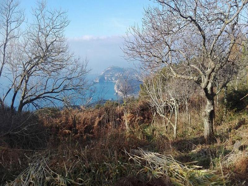 OlisticMap - Sugli antichi sentieri dei monaci