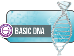 OlisticMap - Thetahealing DNA Base