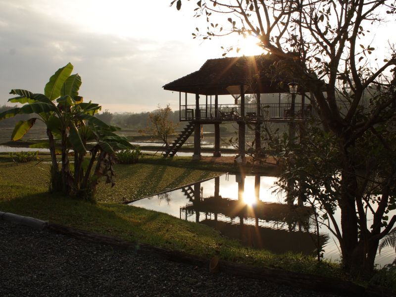 OlisticMap - Vacanza-Ritiro Yoga Thailandia