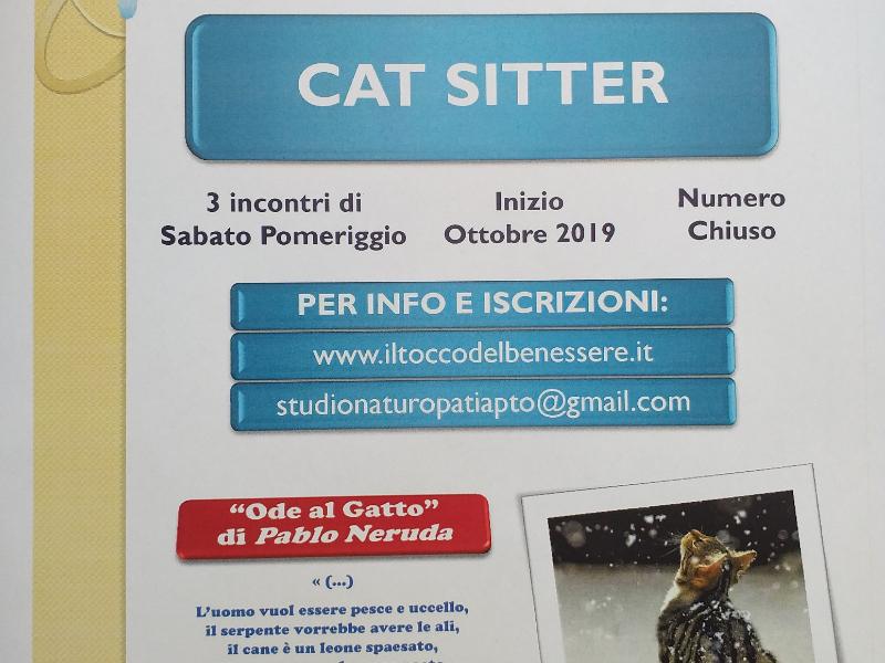 OlisticMap - UNIVERSO GATTO :  CAT- SITTER