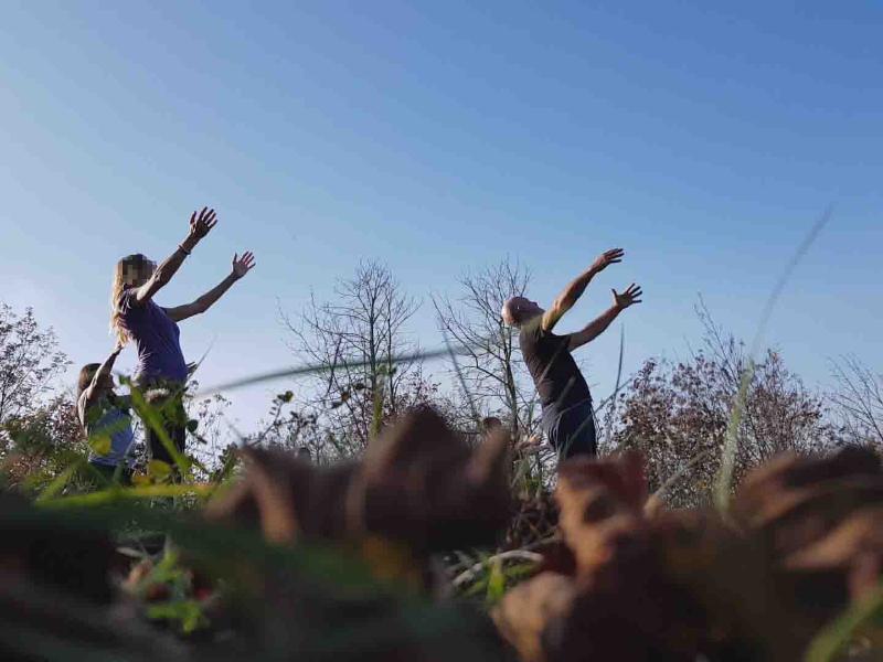 OlisticMap - Forest Bathing: Ritiro Di Meditazione Nella Natura