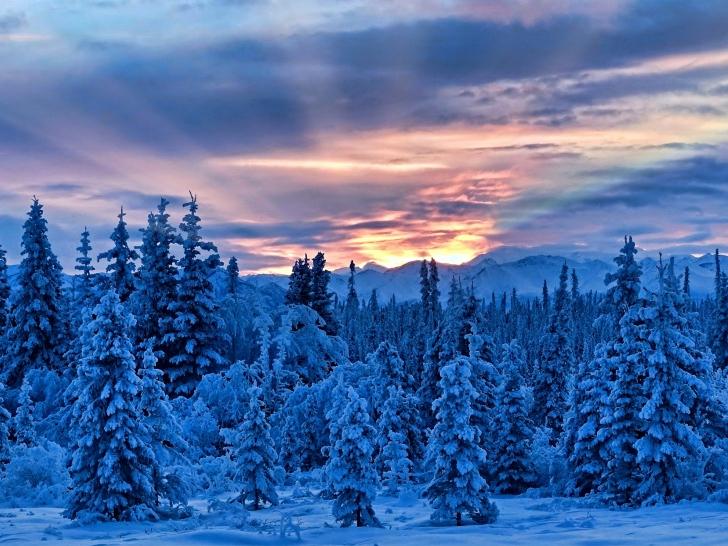 Olisticmap - Solstizio d'inverno alcune curiosità