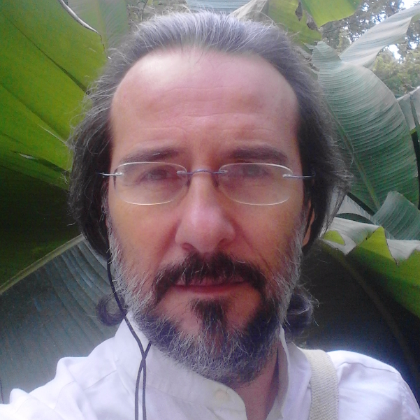 OlisticMap - Stefano  Pisano