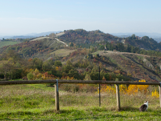 Olisticmap - Cooperativa Agricola Dulcamara