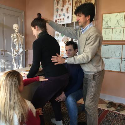OlisticMap - Alexander Technique Academy
