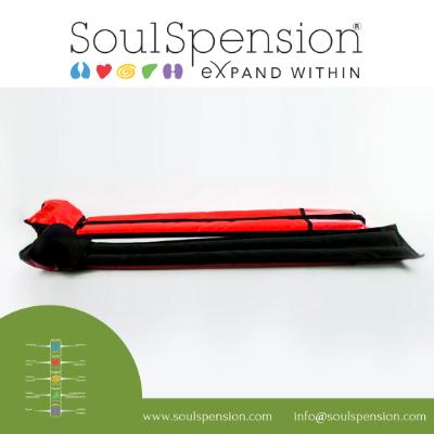 OlisticMap - SoulSpension  - La Sospensione Posturale